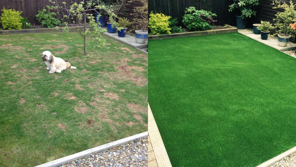 Artificial Grass South Wales - Before Artificial Grass and After
